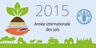 2015 année des sols