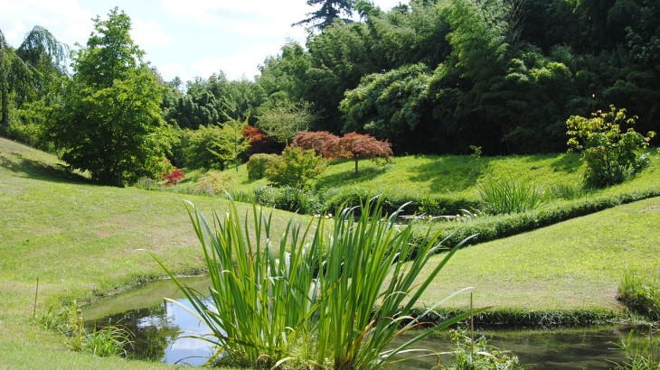 japanese-garden-924579_1280